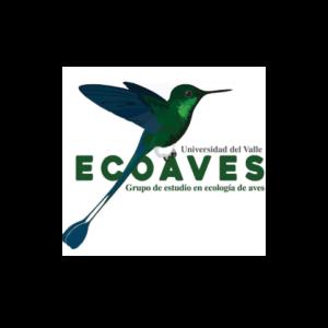 Logo Ecoaves, Grupo de estudio en ecologìa de aves de la Universidad del Vallle