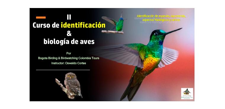 Logo Bogota Birding